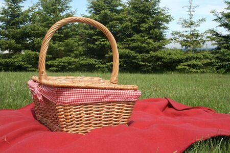 blankets: Blanket and basket