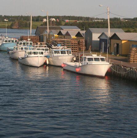 lobster boat: Lobster Fishing Harbor