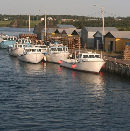 wharf: Lobster Fishing Harbor