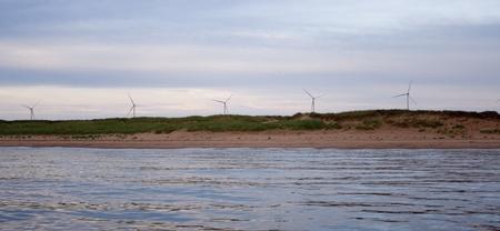 Windmills on the coast photo
