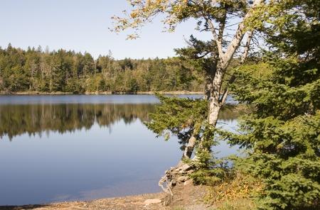 scotia: Lake in Nova Scotia Stock Photo