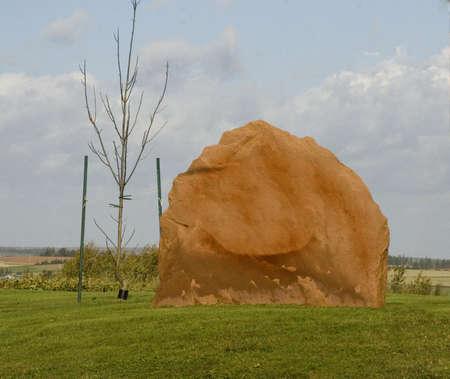 Stone in een veld