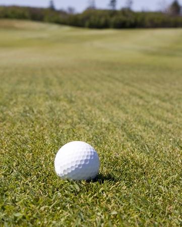 ゴルフ ボール待機