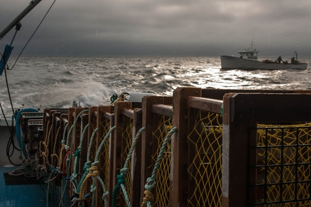commercial fisheries: Lobster Traps Stock Photo