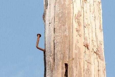 rusty nail: Rusty Nail en un mensaje Foto de archivo