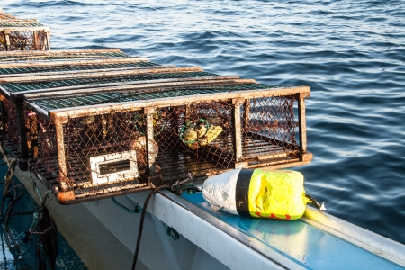 lobster pot: lobster trap and buoy