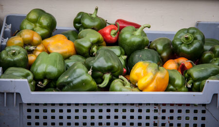 green peppers Imagens