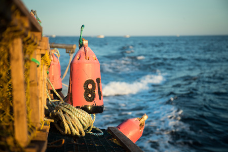buoys: Lobster Buoy