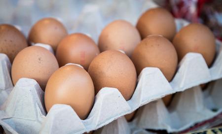 갈색 계란 스톡 콘텐츠