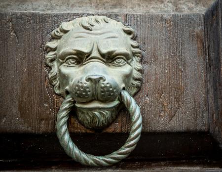 knocker: lion door knocker