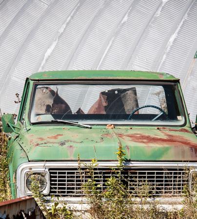 derelict: derelict green truck