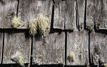 shingles: rustic wooden shingles