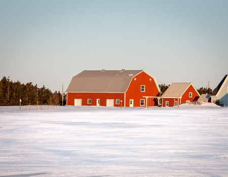red barn: red barn in winter