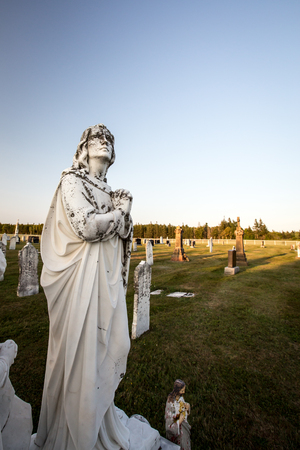 angel cemetery: angel in a cemetery