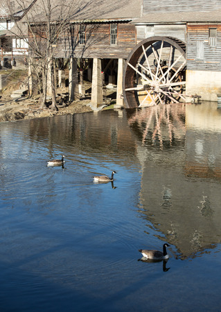 water mill: water mill