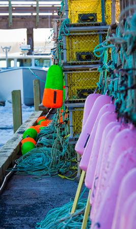 buoys: purple lobster buoys