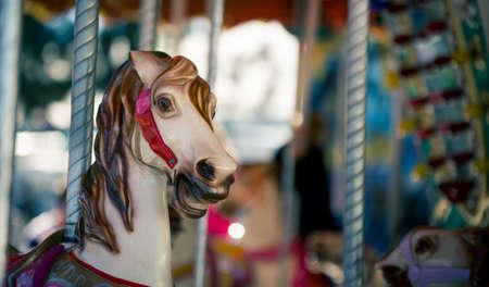 merry go round: horse merry go round
