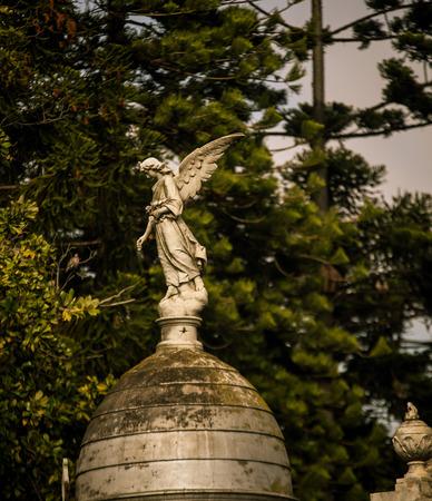 angel cemetery: angel statue Recoleta Cemetery Stock Photo