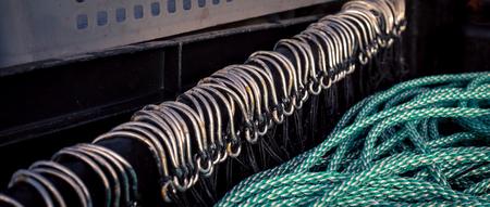 row of fish hooks