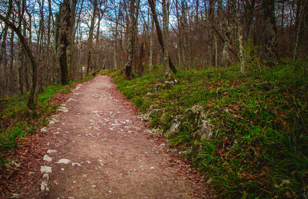 pathway  plitvice lakes
