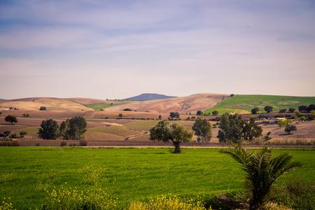 rolling fields in Spain
