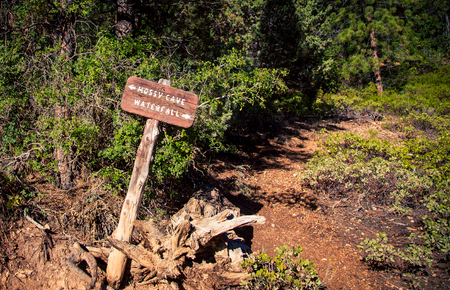 Wooden signpost in Bryce Canyon