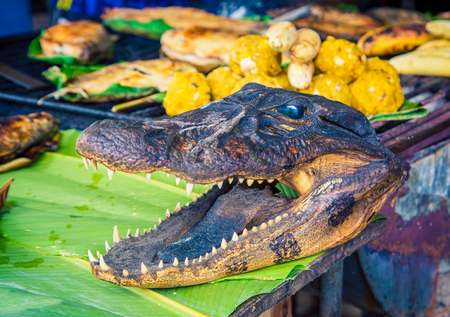 Alligator head at a market in Iquitos