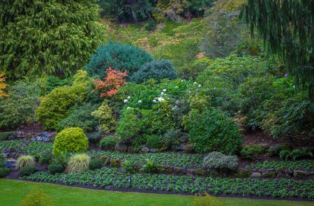 Flower garden in British Colombia