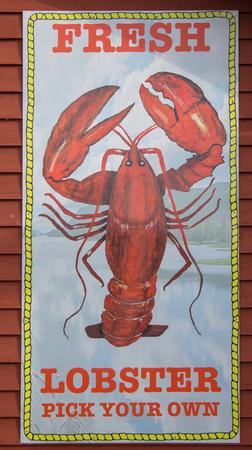 Fresh lobster sign Stock fotó