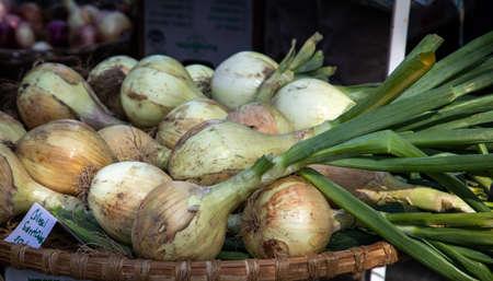 fresh onions at a farmers market