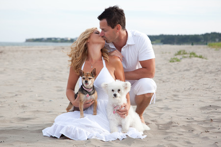 A kissing couple with their pet dogs on the beach. Stock Photo