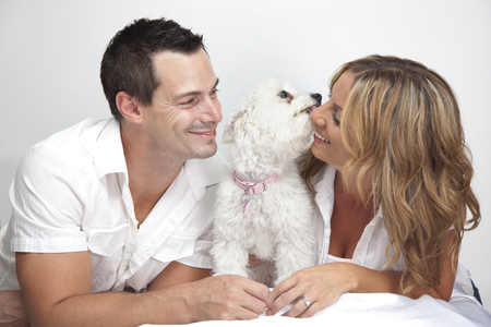 Happy couple with young pet dog, puppy kissing woman. Stock Photo