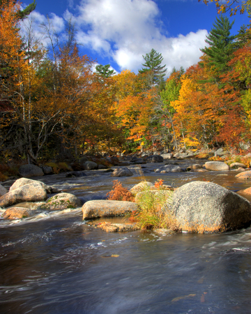 a flowing river or lake in autumn surrounded by orange, yellow, red and gold trees or forest Stock Photo