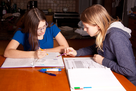 one sister explains homework to another