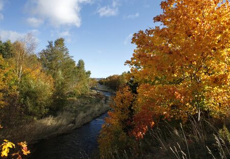 Winding river through an orange forest in autumn.