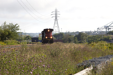freight train: a train approches on tracks in a rural area with flowers, city in behind