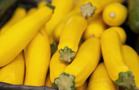 group of organic yellow zuccini at the market