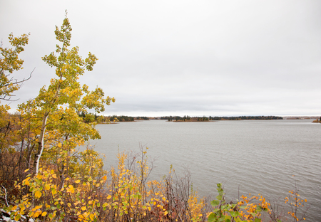 autumn colors by the Astotin lake at Elk Island Park in Alberta Stock Photo