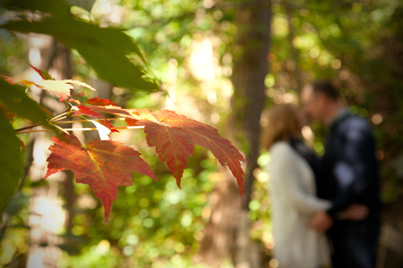 With a red maple leaf in the foreground, a couple are softly kissing in the woods on an autumn day with copy space Stock Photo