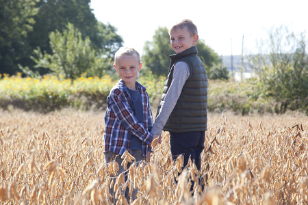 Brothers exploring a field holding hands, looking back at the camera on an autumn day