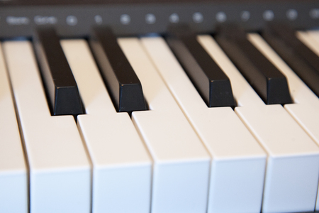 Black and white keys on an electronic piano keyboard Stock Photo - 113086224