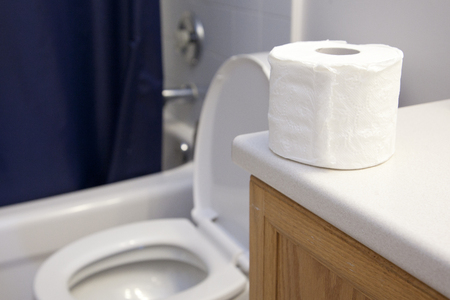 Roll of toilet paper sitting beside an open toilet in the washroom Stock Photo - 113086360