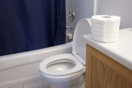 In a bathroom beside the shower and sink, a toilet and roll of toilet paper sit Stock Photo - 113086363
