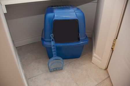 A blue litter box for a cat with a hood and swinging door with a plastic poop scoop in a bathroom
