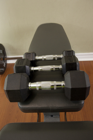 Dumbells lined up ready to be lifted at various weights