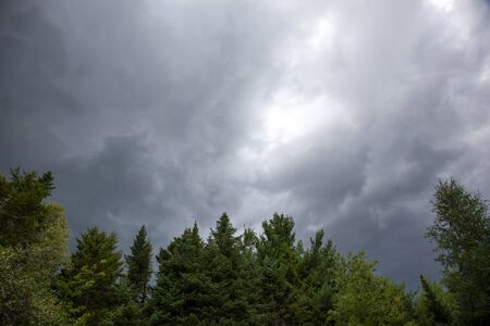 dark grey clouds forming above some trees in canada before a summer storm