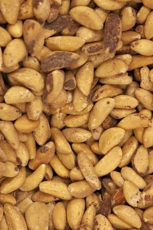 dark and light brown colored roasted brazil nuts Banco de Imagens