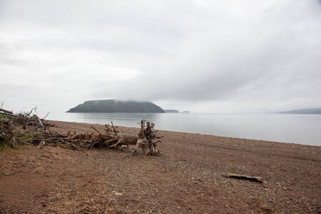 a piece of old wood on the beach on a gloomy day with islands behind Banco de Imagens