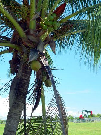 keepout: Brunei. Coconut Oil  Crude Oil