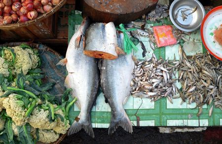 Burma (Myanmar). Fresh Fish Market Trade photo
